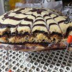 زبرا کیک آزی