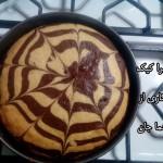 زبرا کیک هما