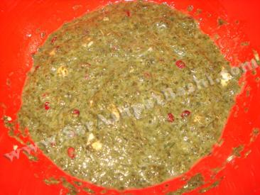 مایه کوکو سبزی